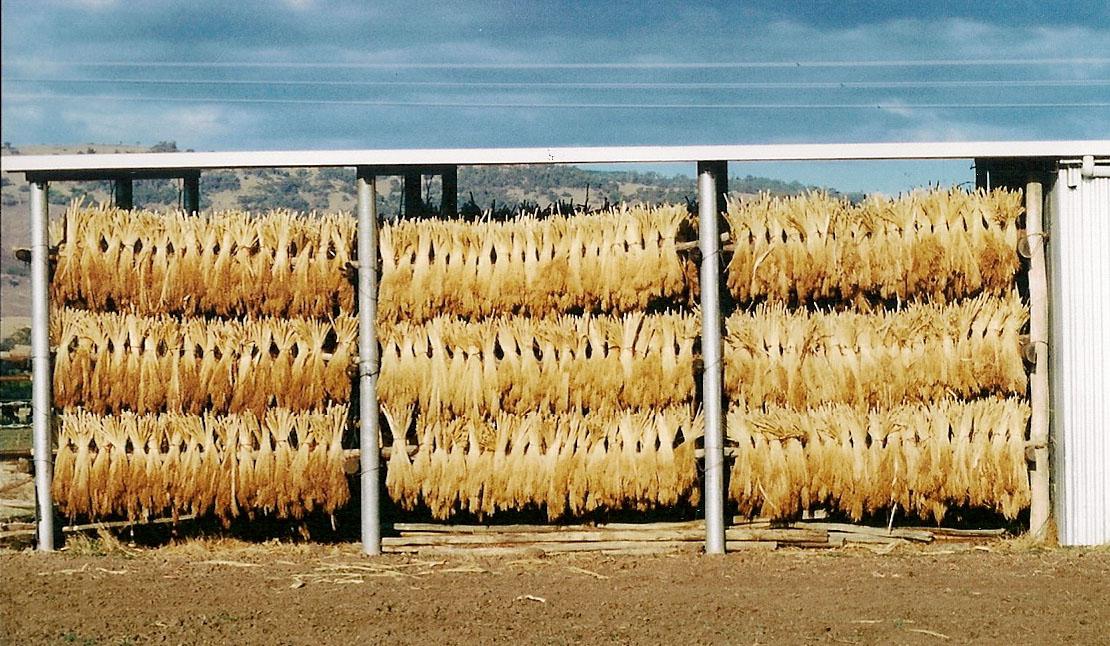 The Broom Making Process | Tumut Broom Factory